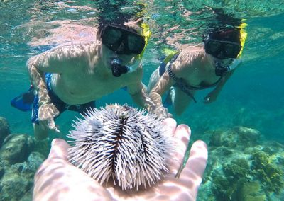 Creole-Rock-Snorkeling-St-Maarten-02